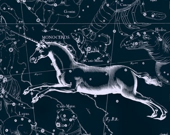 Zodiac, Antique prints, Constellation map, Monoceros, 112