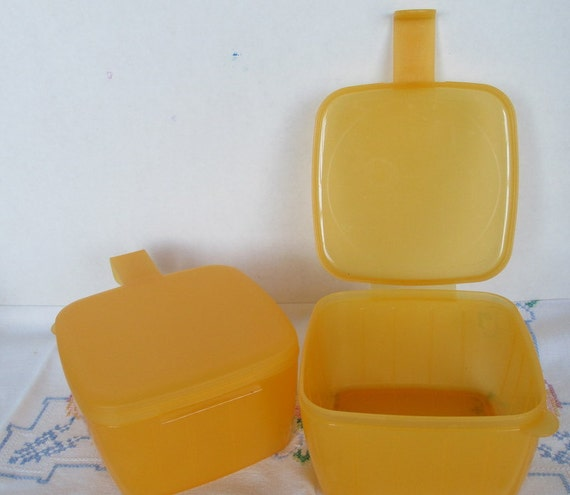 2 tupperware cheese keeper square forget me not by gingernirie