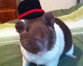 Bowler Guinea Pig Hat, Bowler Hat for Guinea Pigs, Bowler Hat for Small Pets, Bowler Small Pet Hat, Guinea Pig Clothes, Guinea Pig Costume