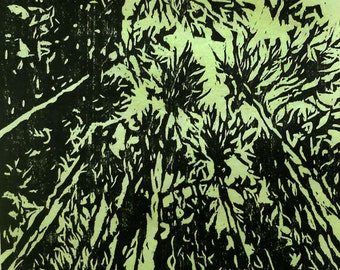 Under the Pines woodcut