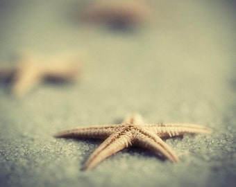 beach star fish fine art photography fathers day for her him child nursery sand