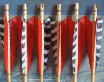 Custom Dozen Arrows