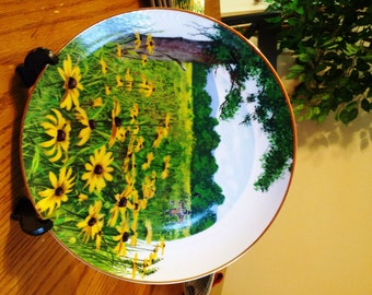 Wildflowers of the South Black-Eyed Susans Collector's Plate - Royal Winsor