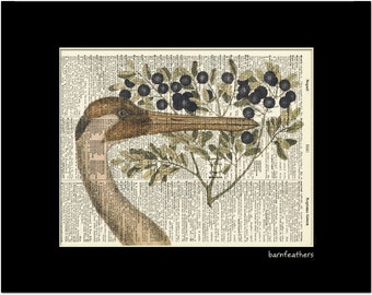 Dictionary Art WHOOPING CRANE Bird Print vintage dictionary page book art print No.P139