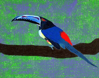 Aracari III, original painting of a relative of the Toucan