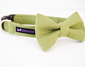 Green Dog Collar Bow Tie Set Tobias