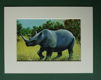 Vintage 1960s Rhinoceros Print - White Rhino - African Wildlife - Safari - Green - Savanna - Children's - Nature - Africa - Matted Picture