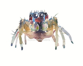 Childrens Art - 10 x 8 inchs - Watercolor Painting - Animal Art Print -  Wolf Spider