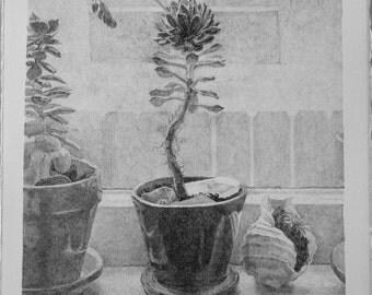 Still life print lithograph