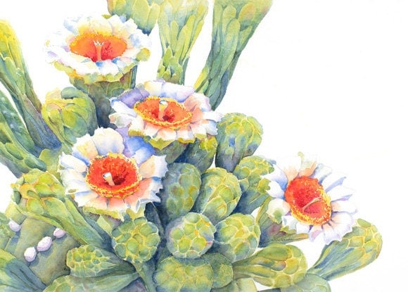 Saguaro CactusFlowersPrint of Original Watercolor