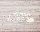 Photography Backdrop - Distressed White Wood - 3 ft x 2 ft - Newborn Vinyl Backdrop Photo or Photobooth Prop