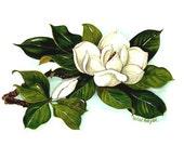 Magnolia   note cards