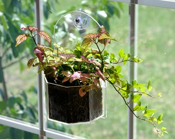 Window Planter - Grow Plants Indoors and Outdoors from Your Window or Wall