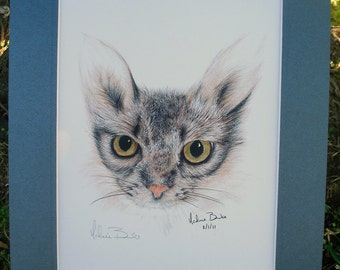 The Watchful Cat print