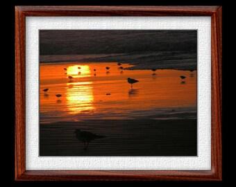 Sunrise Beach Print - 8x10 or 11x14 Beach Photograph - Nature Photograph - Nature Print (P24)