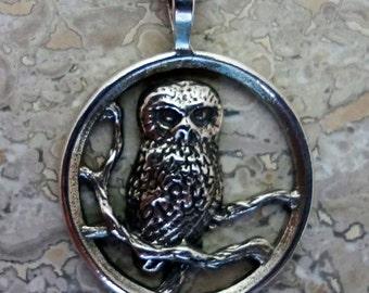 Saw Whet Owl Pendant