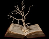"""Photographic Print of Book Sculpture """"Unkindled Growth"""" 10"""" x 8"""""""
