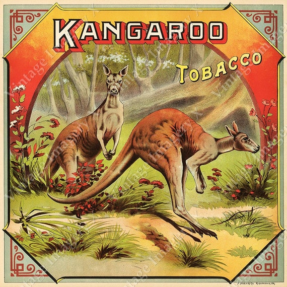 Vintage Kangaroo Australia Tobacco Crate Box Label Bar Game Room Fine Art Print Poster
