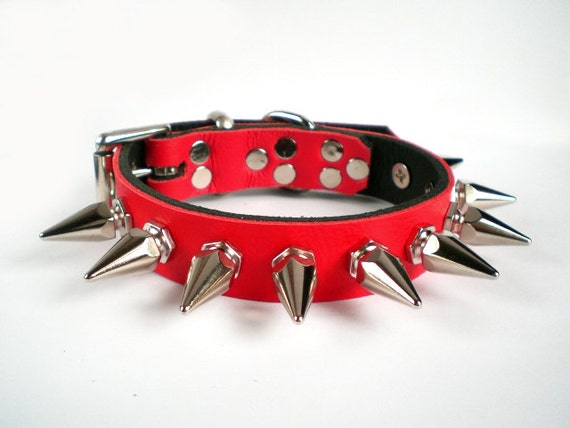 Baby Blue Spiked Dog Collar