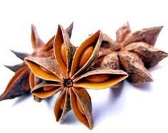 Anise Star - Essential Oil