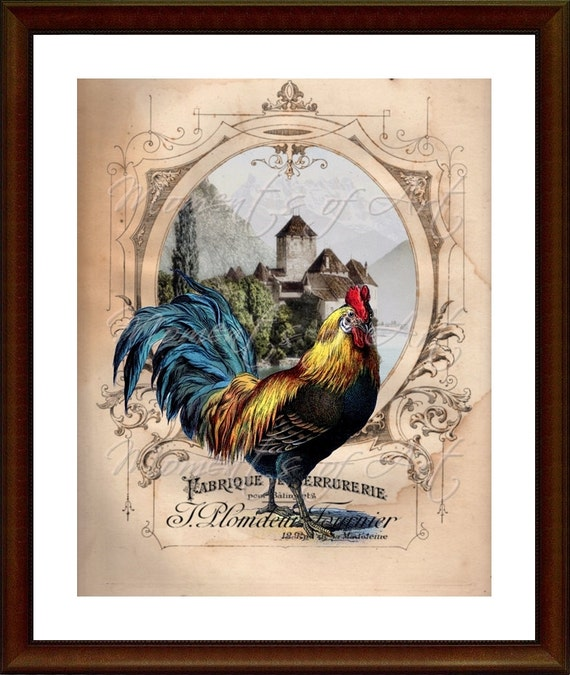 Colorful french rooster 8x10 print kitchen art by momentsofart for French kitchen artwork