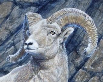 Big Horn Ram Painting