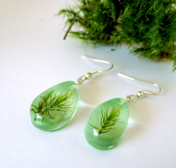 Real Lichen Earrings - 925 sterling silver- green resin Mediterranean Costa Brava  natural handmade unique