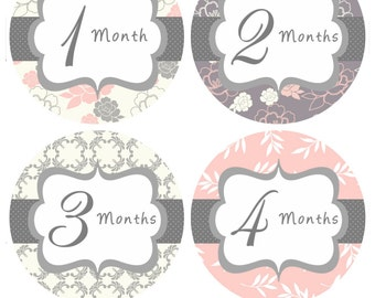 Monthly Milestone Stickers Baby Month Stickers Baby Girl Pink Grey Floral Bodysuit Sticker Month Stickers Baby Shower Gift Photo Prop Mia2-R