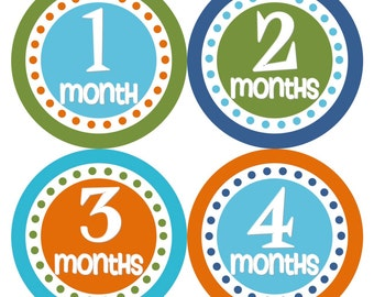 Monthly Baby Stickers Baby Month Stickers Blue Green Orange Monthly Bodysuit Milestone Stickers Baby Shower Gift and Photo Prop - Nigel