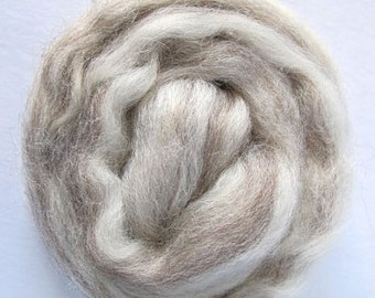 Mixed BFL Combed Top - Shipping Included in USA