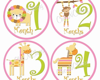 Mod Zoo Pink- PRINTABLE Round Monthly Infant Stickers-.PDF Instant Download Digital file only-Item No. MS010