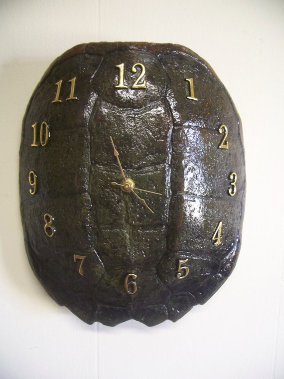 Snapping turtle shell - photo#18