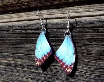 Blue butterfly wing earrings. FREE SHIPPING