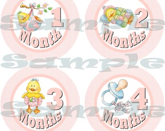 Month to Month Baby Shower gift 1- 12 Month stickers infant monthly stickers Onepiece Stickers Monthly Stickers Baby Girl Ducks decal