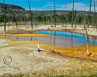Yellowstone National Park, Nature Photography, Thermal Pools Yellowstone, Landscape Photography,  Thermal Pools,  US National Park,