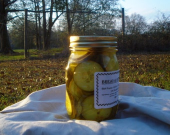 Bread&Butter Pickles, 3-16oz Jars, Homemade