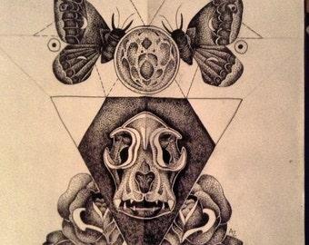 Stippled Dotwork Kitten Skull Drawing (PRINT)
