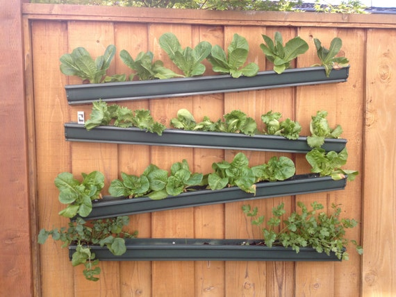 Rain gutter planters design decoration for Rain gutter planter box