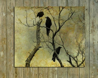 Crows Photograph Art, Ravens Fine Art Print, Little Crow, Silver Halide Crow Print - I Know A Secret