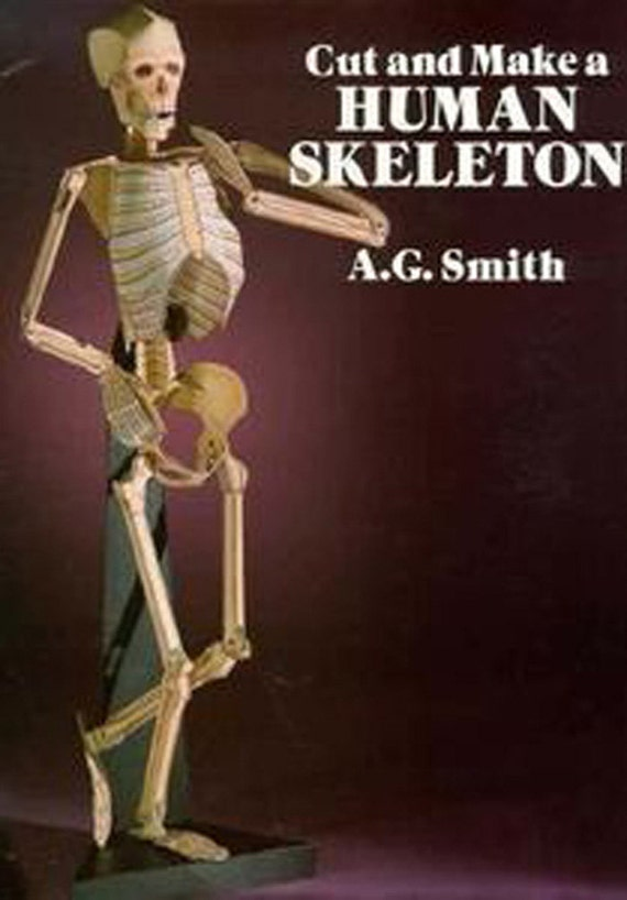 human skeleton cut and make kit 1989, Skeleton