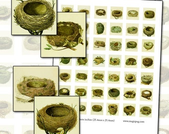 Antique Bird Nest inchies digital collage sheet 25mm x 25mm 1x1 inch square 25.4mm