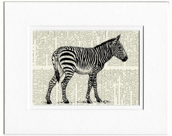zebra dictionary page print