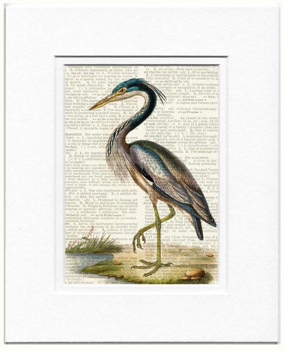 Heron Bird Print