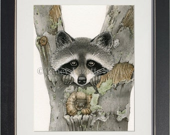 Raccoon - archival watercolor print by Tracy Lizotte