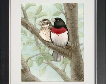 Bird Tree with Rose Breasted Grosbeaks- archival watercolor print by Tracy Lizotte