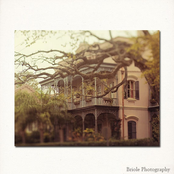 New Orleans Fine Art Photography Southern Beauty