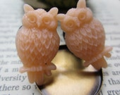 Owl Plugs Gauges Peach
