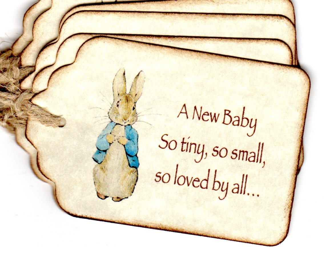 20 baby shower favor tags peter rabbit gift tags birthday