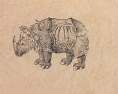 Durers Rino Patch Antique Rhinoceros Print