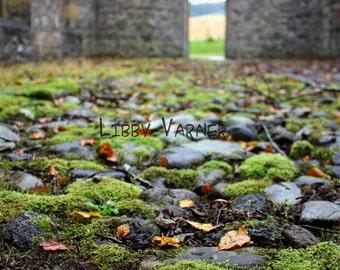 Auchindoir Church, Aberdeenshire, Scotland 6 x 9 Photograph - Free Shippng in US -